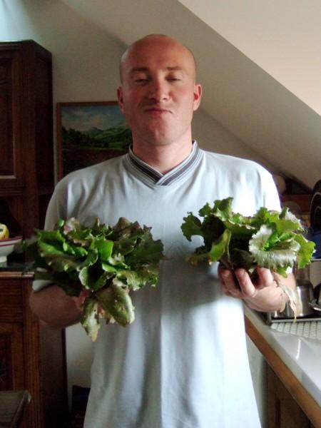 elles sont pas belles mes salades